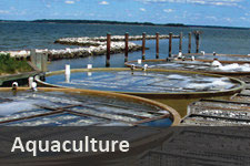 Water Use for Aquaculture